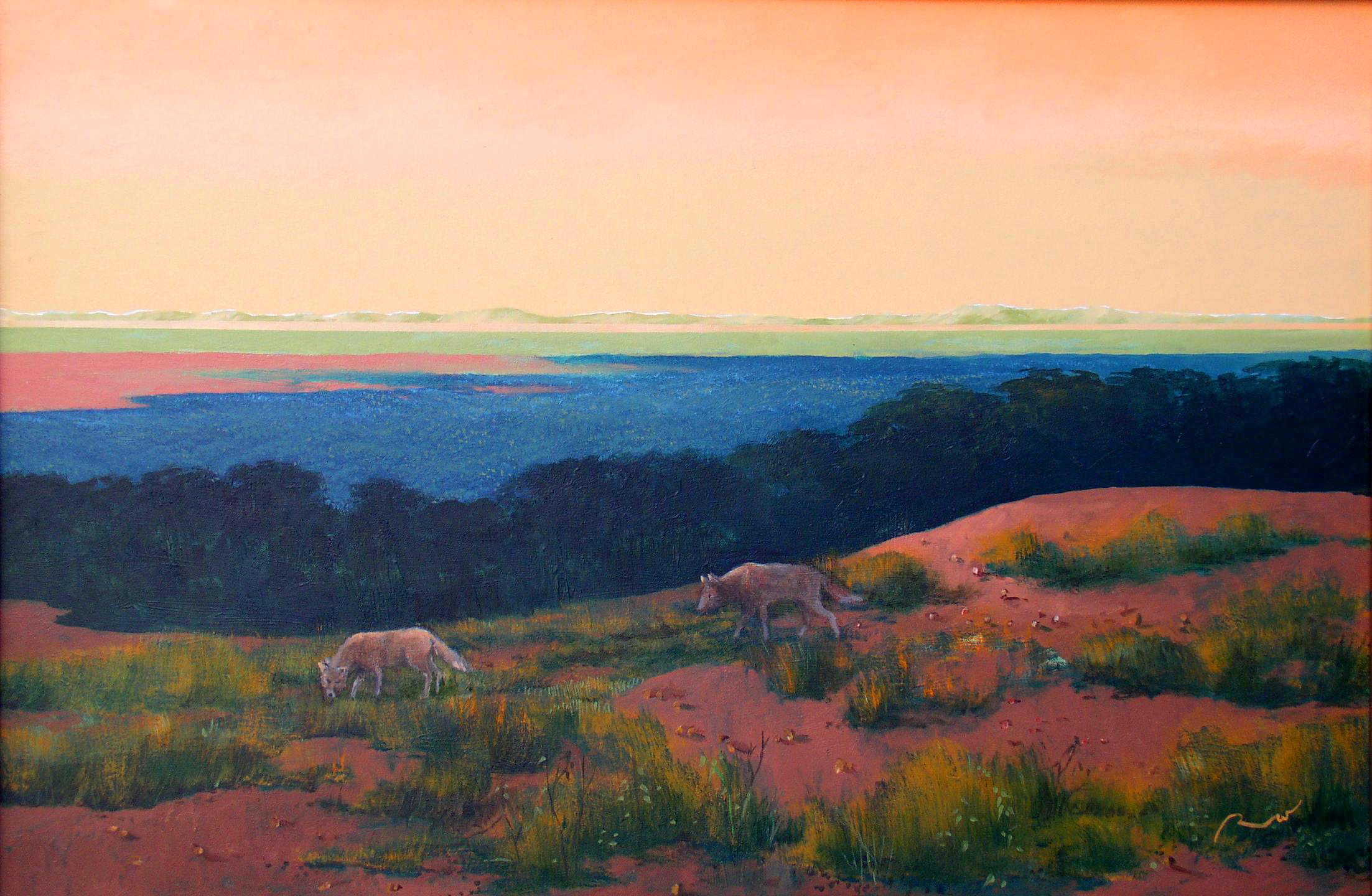"""Two Coyotes, 1995, acrylic on canvas, 24"""" x 36"""""""