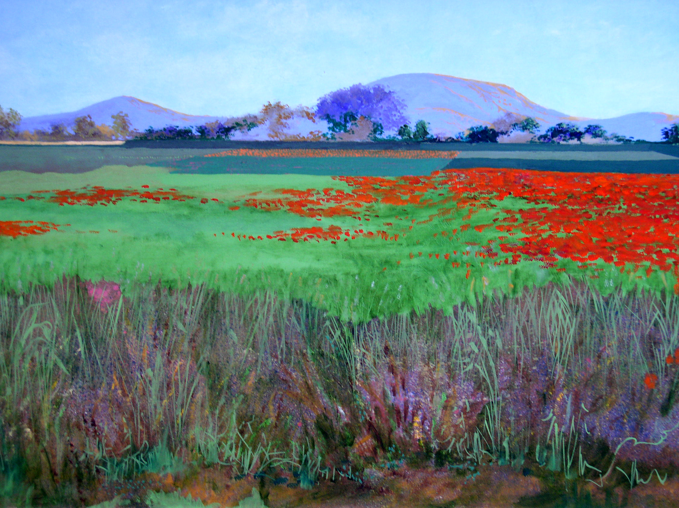 "Poppy Field, 1994, acrylic on canvas, 24"" x 30"""