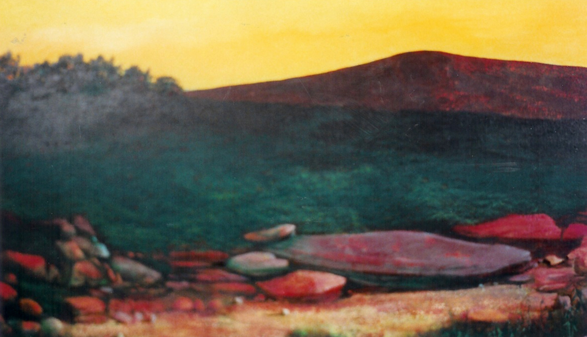 San Fernando Hills, 1990, acrylic on canvas, 24